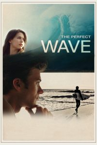 Poster The Perfect Wave