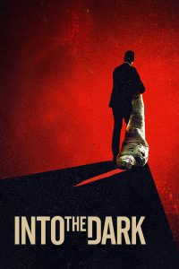 Poster Into the Dark