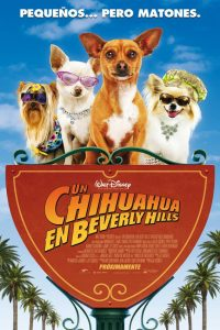 Poster Un chihuahua en Beverly Hills